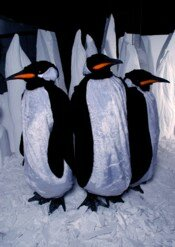 Winter Wonderland Party Theme Penguin Stilt Walkers